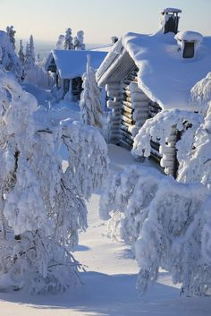 Winter!!! #snow #forest #cabins