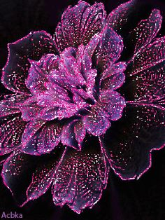 Glittering Purple Flower