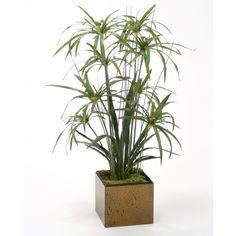 Distinctive Designs 2906 Silk Umbrella Papyrus Grass Mix with Cymbidium Leaf Plants