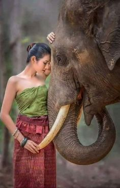 """When dealing with people, remember you are not dealing with creatures of logic, but creatures of emotion. Elephants Photos, Elephant Pictures, Elephant Love, Elephant Art, Elephant Photography, Animal Photography, Animals And Pets, Cute Animals, Foto Art"