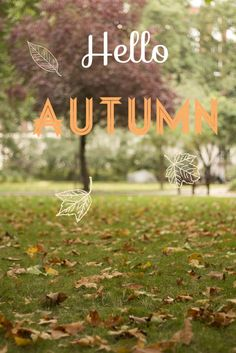 Hello #Autumn! Welcome first day of fall September 22nd 2013! #welovefall