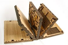 Codex Silenda: Beautiful Wooden Book With Puzzle Pages, Must Be Solved To Continue Reading.