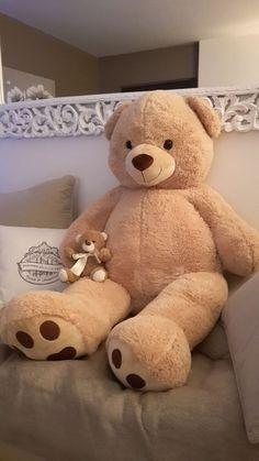 Huge Teddy Bears, Giant Teddy Bear, Teddy Bear Images, Teddy Bear Pictures, Teddy Girl, Teddy Bear Gifts, Teddy Bear Toys, Photo Ours, Teddy Bear Tattoos