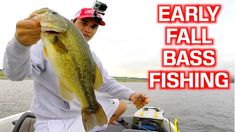 Early Fall Bass Fishing Tips and Techniques