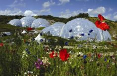 Eden Project St Austell. Cornwall UK Experience the smells, sights and scale of a rainforest ... Eden boasts the worlds largest rainforest in captivity with steamy jungles and waterfalls