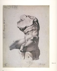 "Charles Barque plate of the Belvedere Torso for the ""Cours de dessin"" (""Course in Drawing"") he devised with Jean-Léon Gérôme Drawing Studies, Art Studies, Figure Drawing, Drawing Reference, Anatomy Reference, Drawing Sketches, Art Drawings, Charles Bargue, Plate Drawing"