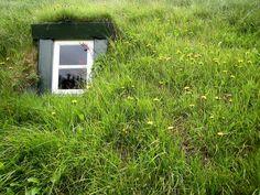 A small window ....