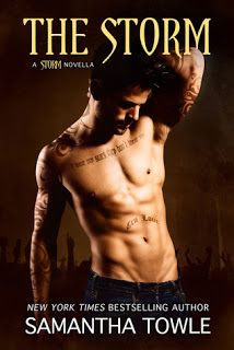 The book is on my table: The Storm (The Storm #3.5) by Samantha Towle