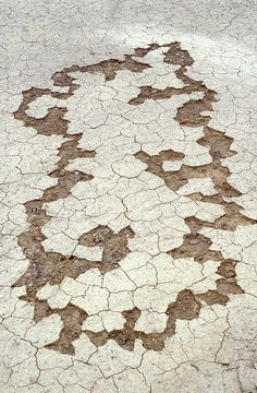 Andy Goldsworthy, Cracked earth partly removed, 1986.