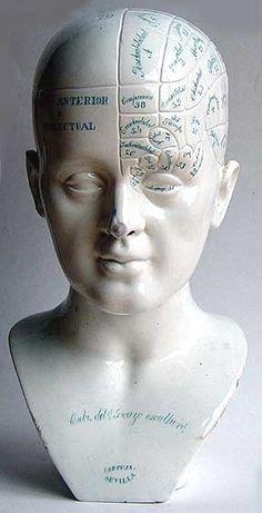 Spanish Phrenology Bust. Pottery. Near Life Size. Seville, Spain. Circa 1850.