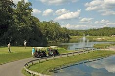 If golf is on your agenda, then Stonebridge Village Condominiums in aims to please! Condominium, Horseback Riding, Swimming Pools, Golf Courses, That Look, Fishing, Around The Worlds, Club, Activities