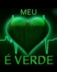 #Palmeiras #verdãoteamo