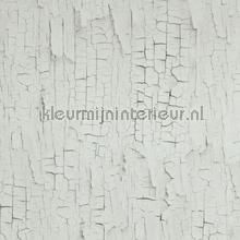 Craquele off white behang 218020 hout BN Wallcoverings