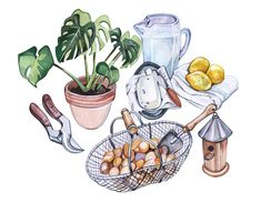 Home Grown Paintings *New* - Holly Exley Illustration