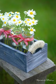 Sweet Arrangement with Daisies should bring a Sweet Smile on a Pretty Face Happy Flowers, Beautiful Flowers, Sunflowers And Daisies, Daisy Love, Daisy Daisy, Decoration Table, My Flower, Dalia Flower, Floral Arrangements