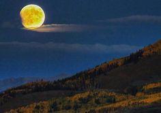 Full Moon Rising Over Some Aspens Near Capitol Peak | Scott Bellow