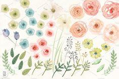 BUNDLE! Watercolor florals by GrafikBoutique on @creativemarket