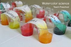 Make and Explore watercolor science by Teach Preschool.fun to do with red & yellow to make orange for Halloween Kindergarten Science, Preschool Lessons, Preschool Learning, Teaching Science, Preschool Crafts, Fun Learning, Teaching Ideas, Science Experiments Kids, Science For Kids