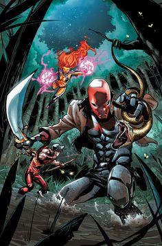 Red Hood & The Outlaws - Jorge Jimenez