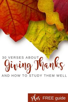 A month of thanksgiving to develop a life of thanksgiving | 30 verses on giving thanks & FREE how-to guide to study the Bible well