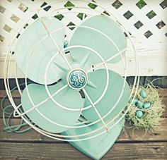 Robins Egg blue fan