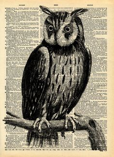 """Vintage Book Print """"The Great Horned Owl"""" Upcycled Recycled Book Print - Feathers Wings Woodland"""
