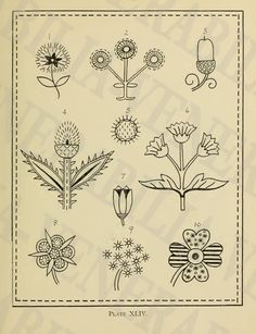1917  Collection of 202 Vintage Embroidery by LithograghLibrary