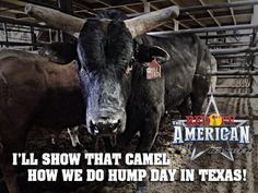 ❦ RFD-TV The American I WISH MY DAD WOULD OF GOT THE TICKETS LIKE HE WAS SUPPOSED TO!