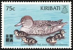 Green-winged Teal stamps - mainly images - gallery format