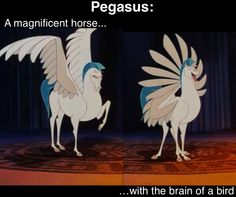 I'm going to start using 'Pegasus' as a code name for really handsome, really stupid people...