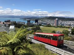 Wellington New Zealand is magical. - Travel - - Wellington New Zealand is magical. The post Wellington New Zealand is magical. appeared first on Gag Dad. Wellington New Zealand, Top Travel Destinations, Great Places, Travel Photos, Travel Inspiration, Nature Photography, Around The Worlds, The Incredibles, Adventure