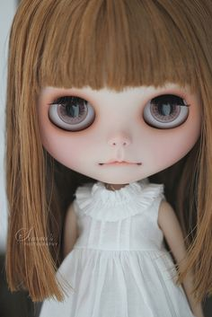 Momo love   This little one arrived 2 days ago. I'm SO smitt…   Flickr