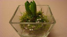 Frühlingsdeko Ideen mit Hyazinthen – Deko Ideen mit Flora-Shop