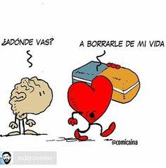 Brain And Heart, Life Lessons, Sad, Humor, Feelings, Comics, Memes, Funny, Quotes