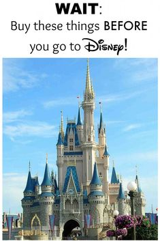WAIT buy these things BEFORE you go to Disney