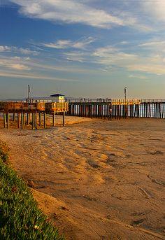 The beach I grew up on Pismo Beach...