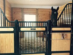 Here is our Classic Equine European Stall in a barn in North Caroline. The barn was built by Charles Wood.