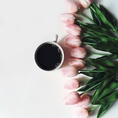 2 of my most favorite things: coffee & beautiful tulips.  All that's missing is a happy dog wagging his tail at me.  morning!