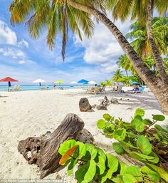 And relax! Worthing Beach on Barbados is a luxury destination point loved by celebrities