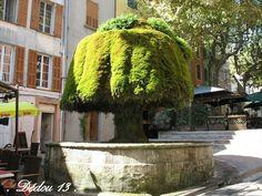 Une des 30 fontaines de Barjols #provenceverte #provence #var