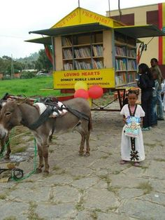 Donkey-powered mobile library, somewhere in Ethiopia