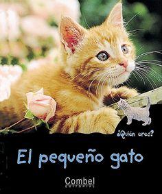 El pequeño gato: Combel Editorial