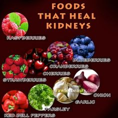 ♥Foods that heal kidneys♥1. Raspberries -  2. Strawberries -  3. Cherries -  4. Cranberries - 5. Blueberries -  6. Red Bell Peppers - 7. Parsley - 8. Garlic - 9. And Onion - Plus more at link.  http://www.naturalcuresnotmedicine.com/2013/03/9-foods-that-heal-kidneys.html