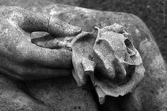https://flic.kr/p/qTFyTT | Ostfriedhof Essen | Ostfriedhof Essen