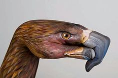 Hand art, body painting, eagle