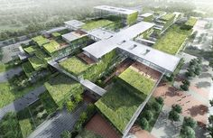 HASSELL   Projects - Hainan Cancer Hospital