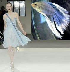 Mother Nature Inspired Fashions | Luxe Gifts Fabulous Blog