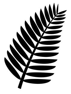 Palm frond clip art free. Transparent background. This is a more complex and realistic template. Also usable as fern leaf.