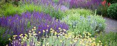 Image result for michael mccoy gardens