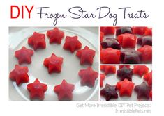 DIY Frozen Berry Water Dog Treats